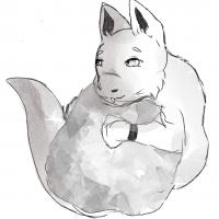 Isaac – Loup arctique + Gecko