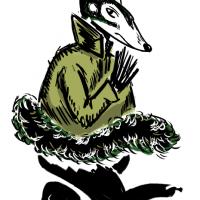 Ajimig – koatie