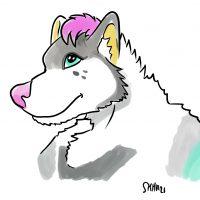 Togodor dessine Judy la Husky